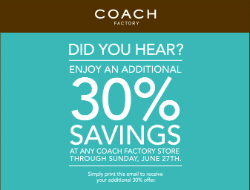 coach-bag-discount3