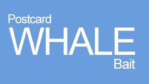 Postcard Whale Bait
